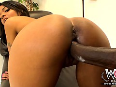 ebony-hotie-gets-her-pussy-destroyed-by-a-big-dick