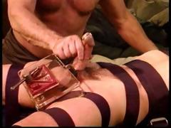 cbt-young-stud-with-bull-cock-gets-balls-crushed-with-my
