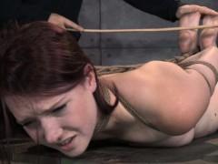 tied-up-bdsm-lover-ashley-lane-caned