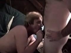 gay-bears-get-their-little-dicks-sucked