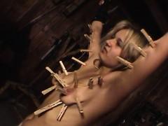 elexier-history-torture