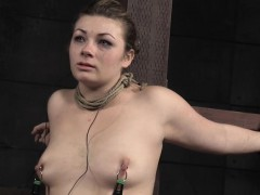 restrained-harley-ace-flogged-and-whipped