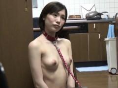 transformation-pet-with-real-estate-suzumura-airi