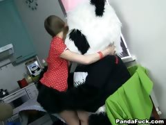 toy-panda-with-a-big-pink-by-a-dick