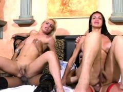 Four Nasty Shemale Sluts Get Wild In Extreme Bondage Orgy