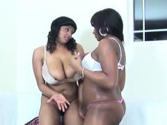licking-bbw-lesbian-ebonies