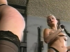 BRUCE SEVEN - Bionca - Jeanna Fine - Zara White